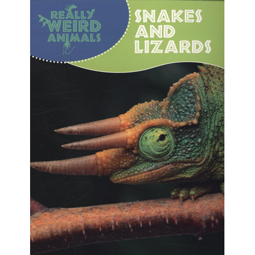Snakes and Lizards (BOK)