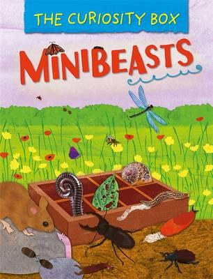 Curiosity Box: Minibeasts (BOK)