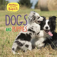 Dogs & Puppies (BOK)