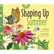 Shaping Up Summer (BOK)