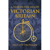 Year in the Life of Victorian Britain (BOK)