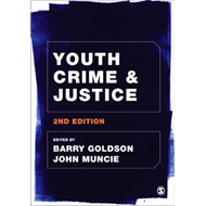 Youth Crime and Justice (BOK)