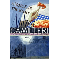 Voice in the Night (BOK)