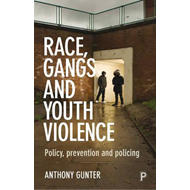 Race, gangs and youth violence (BOK)