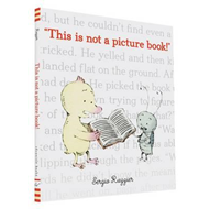 This Is Not a Picture Book (BOK)