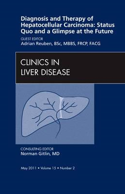 Diagnosis and Therapy of Hepatocellular Carcinoma: Status Qu (BOK)