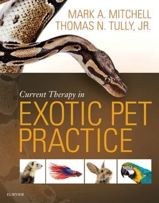 Current Therapy in Exotic Pet Practice (BOK)