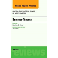 Summer Issues and Accidents, An Issue of Critical Care Nursi (BOK)
