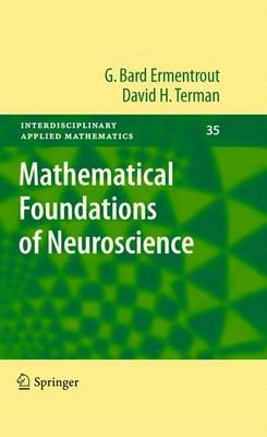 Mathematical Foundations of Neuroscience (BOK)