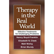Therapy in the Real World: Effective Treatments for Challenging Problems (BOK)
