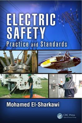 Electric Safety: Practice and Standards (BOK)