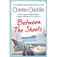 Between the Sheets (BOK)
