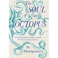 Soul of an Octopus (BOK)