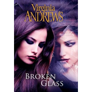 Broken Glass (BOK)