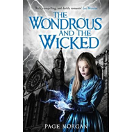 Wondrous and the Wicked (BOK)