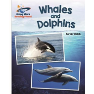 Reading Planet - Whales and Dolphins - White: Galaxy (BOK)