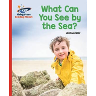 Reading Planet - What Can You See by the Sea? - Red B: Galax (BOK)