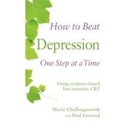 How to Beat Depression One Step at a Time (BOK)