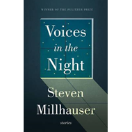Voices in the Night (BOK)