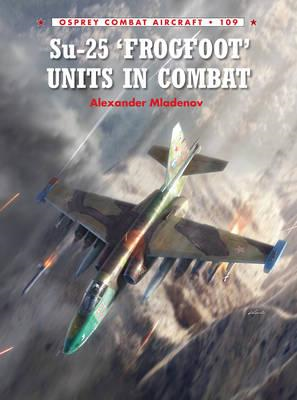 Su-25 'Frogfoot' Units in Combat (BOK)