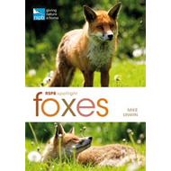 RSPB Spotlight: Foxes (BOK)