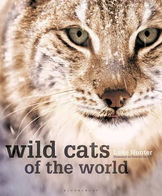 Wild Cats of the World (BOK)