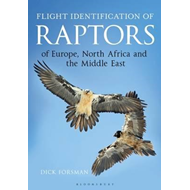 Flight Identification of Raptors of Europe, North Africa and (BOK)