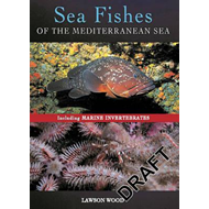 Sea Fishes Of The Mediterranean Including Marine Invertebrat (BOK)
