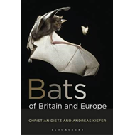 Bats of Britain and Europe (BOK)