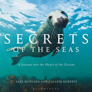 Secrets of the Seas (BOK)