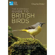 Everyday Guide to British Birds (BOK)