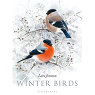 Winter Birds (BOK)
