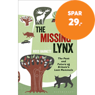 Produktbilde for Missing Lynx (BOK)