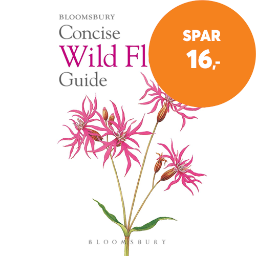 Concise Wild Flower Guide (BOK)