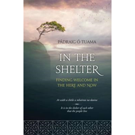 In The Shelter (BOK)