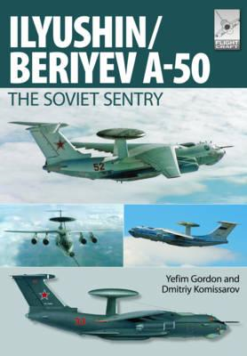 Flight Craft 6: Il'yushin/Beriyev A-50 (BOK)