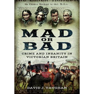 Mad or Bad (BOK)
