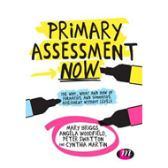 Primary Assessment Now (BOK)