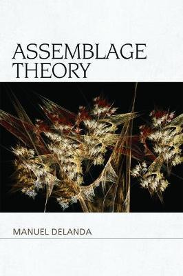 Assemblage Theory (BOK)