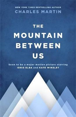 Mountain Between Us (BOK)