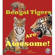 Bengal Tigers are Awesome! (BOK)