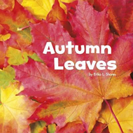 Autumn Leaves (BOK)