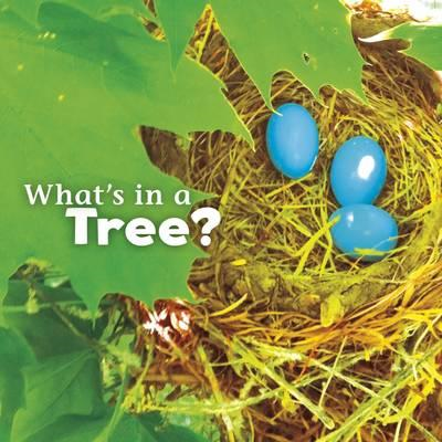 What's in a Tree? (BOK)