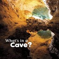 What's in a Cave? (BOK)
