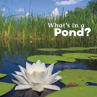 What's in a Pond? (BOK)