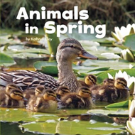 Animals in Spring (BOK)