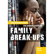 Produktbilde for Hidden Story of Family Break-ups (BOK)