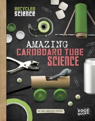 Awesome Craft Stick Science (BOK)