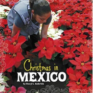 Christmas in Mexico (BOK)