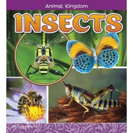 Insects (BOK)